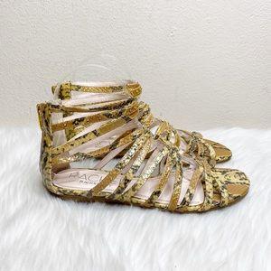 RACHEL Rachel Roy Snake Print Gladiator Sandals